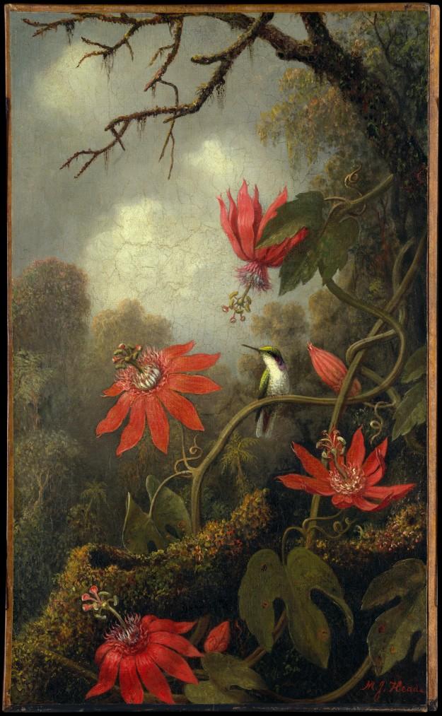 martin-johnson-heade-hummingbird-and-passionflowers-ca-1875-85